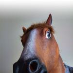 Koniu202's avatar