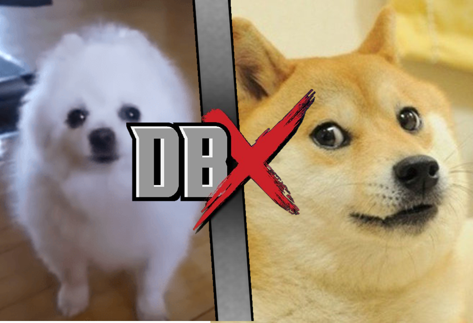 Doge VS Gabe the Dog