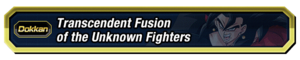 Transcendent Fusion of the Unknown Fighters.png
