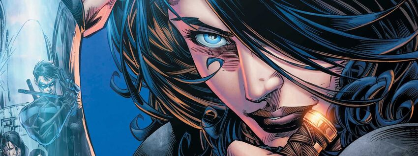 Donna Troy Cover (NT).jpg