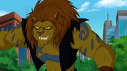 5859239-lion-mane24