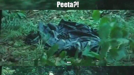 Peeta?! (Old link died :S)