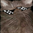 SomeRadomONE's avatar