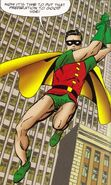 Bruce Wayne Robin SBG