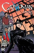 Catwoman Vol 4 - Come Home, Alley Cat