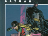 Batman: Fortunate Son