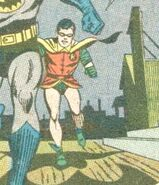 Robin Earth-178 001