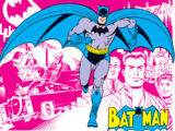 Bruce Wayne (Terra-Dois)