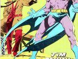 Batman Omnibus (1978) 2