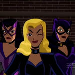 Birds of Prey (The Brave and the Bold).jpg