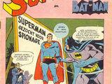 Superman en Batman 28