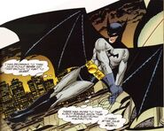 Bruce Wayne Batman SBG