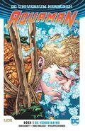 Aquaman (2019) Boek 1 De Verdrinking