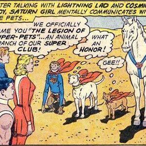 Legion of Super-Pets 01.jpg