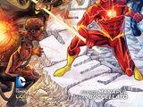 Flash Boek 2: Revolutie van de Rogues