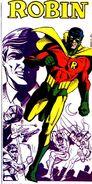 Robin Earth-Two 001