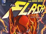 Flash: Seguindo em Frente (Coleção)