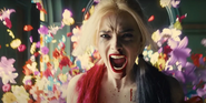 Harley Quinn SS2jpg