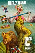 Birds of Prey Character Posters 01