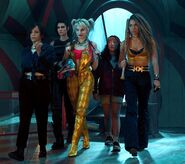 Birds of Prey - team together (1)