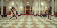 Wonder Woman v Barbara Minerva