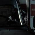 Dusty in Martha's pickup truck