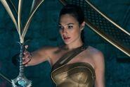 Diana looking at sword