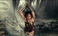 Wonder Woman vs Steppenwolf