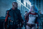 Deadshot and Harley Quinn eye each other up