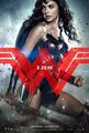 Batman v Superman Dawn of Justice - Wonder Woman character poster