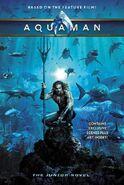 Aquaman: The Junior Novel (2018)