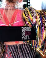 Birds of Prey wrap photo