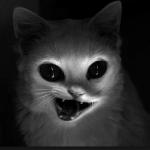 XxBOR$HCHExX's avatar
