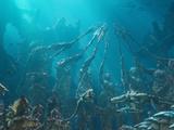 Siete Reinos de Atlantis