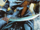 Kahina the Seer (Earth-X0)