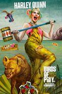 Birds of Prey Charakterposter Harley Quinn