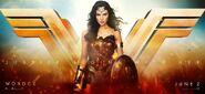 WonderWoman banner