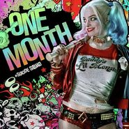 Suicide Squad - One Month