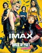 Birds-of-Prey-Official-Images-IMAX-Poster-01