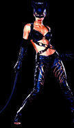 2004 catwoman 008