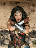 WW Gal Wonder Woman