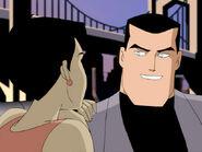 Bruce Wayne (Mystery of the Batwoman)