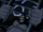 Grodd (DC Animated Universe)