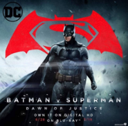 Bats blu-ray promo