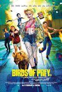 Ptaki Nocy 10