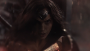 Wonder Woman (DCEU) fight with Doomsday (2)