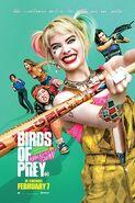 Ptaki Nocy 9