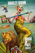 Ptaki Nocy 8