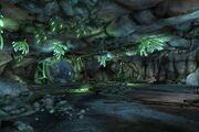 Mogo cave system