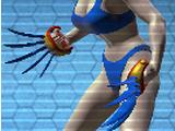 Ninja's Claws
